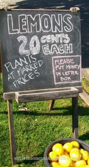 chalkboard selling lemons