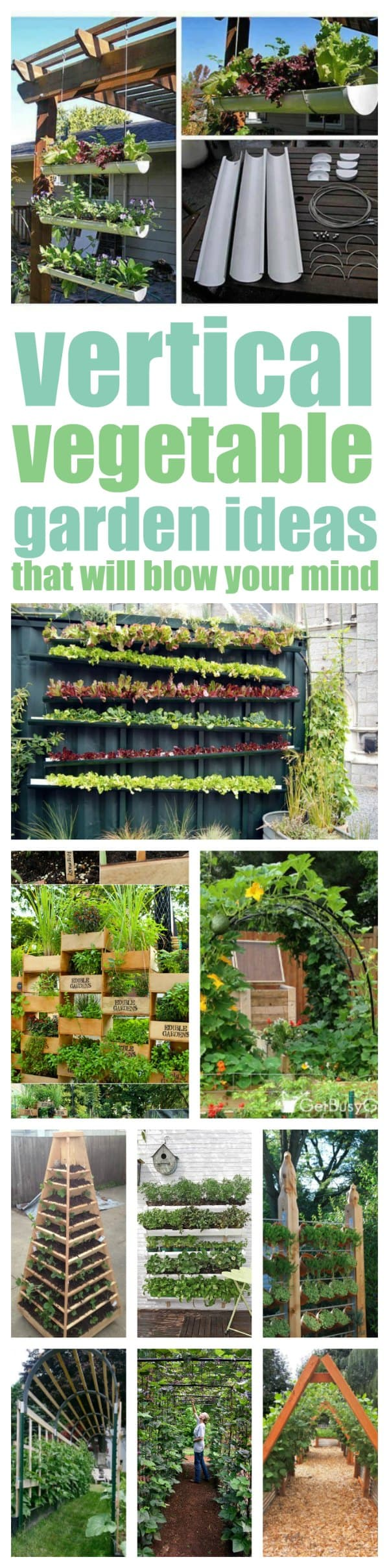 Vertical vegetable garden ideas that will solve your garden space problems
