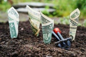 emergency-fund-grow-dollar-bills