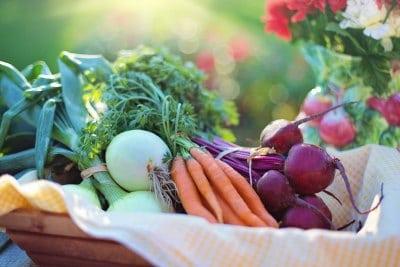 eco-friendly-ideas-grow-vegetables